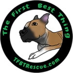 TFBT Rescue Website Link